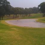 Cabra Wet